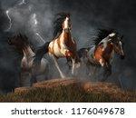 Three Wild Mustangs Gallop...