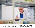 male chemist arranging stock in ... | Shutterstock . vector #1176069472