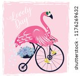 Cute flamingo with sunglasses, Sweet bird with bicycle , vector illustration, summer print design, children print on t-shirt. Animal clip art.