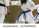 karate shotokan kata | Shutterstock . vector #1176284632