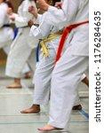 karate shotokan kata | Shutterstock . vector #1176284635
