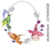 sky bird colorful colibri in a... | Shutterstock . vector #1176346528