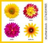 A Set Four Isolated Colors - Fine Art prints