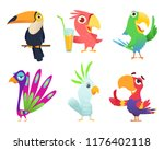 tropical parrots characters.... | Shutterstock .eps vector #1176402118