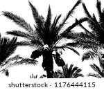 silhouette of a palm tree | Shutterstock .eps vector #1176444115