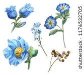 Watercolor Blue Flower Set Wit...