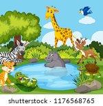 wild animals around a pond... | Shutterstock .eps vector #1176568765