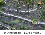 frozen striped puddle with air... | Shutterstock . vector #1176674062