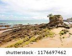 scenic view of the seashore... | Shutterstock . vector #1176697462