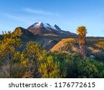 volcano tolima in los nevados... | Shutterstock . vector #1176772615