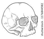vector sketch illustration  ... | Shutterstock .eps vector #1176844582