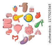 internal human organs icons set.... | Shutterstock . vector #1177025365