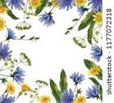 frame of wildflowers. | Shutterstock . vector #1177072318