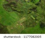arial rural veiw of rural road  ...   Shutterstock . vector #1177082005
