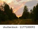 Sunset In A Field . Belarus
