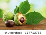 Chestnuts With Leaves On Woode...