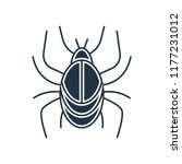 beetle icon vector isolated on... | Shutterstock .eps vector #1177231012