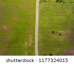 aerial top down shot of... | Shutterstock . vector #1177324015