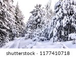 snow covered fir trees in... | Shutterstock . vector #1177410718