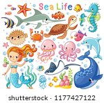 vector set with sea animals and ... | Shutterstock .eps vector #1177427122