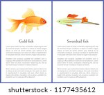 red goldfish and colorful... | Shutterstock .eps vector #1177435612