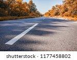 country asphalt forest road... | Shutterstock . vector #1177458802