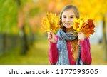 cute little girl having fun on... | Shutterstock . vector #1177593505