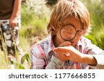 school boys in countryside trip ... | Shutterstock . vector #1177666855