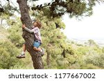 child boy in pine tree forest... | Shutterstock . vector #1177667002