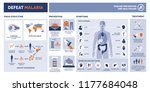 defeat malaria medical vector... | Shutterstock .eps vector #1177684048