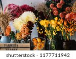 beautiful autumn seasonal... | Shutterstock . vector #1177711942