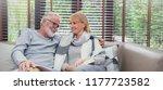 portrait of happy old couple... | Shutterstock . vector #1177723582