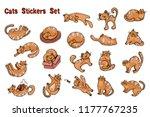 set of vector hand drawn... | Shutterstock .eps vector #1177767235