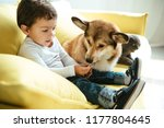 Stock photo adorable boy sitting on sofa with cat and dog 1177804645