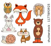 forest animals collection  fox  ... | Shutterstock .eps vector #1177893925