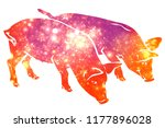 Silhouette of two piglets with...