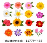 Stock vector big of beautiful colorful flowers vector illustration 117794488