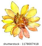 Watercolor Yellow African Dais...