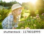 cute little girl wearing straw... | Shutterstock . vector #1178018995