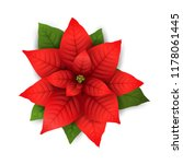 Poinsettia Flowers Isolated...