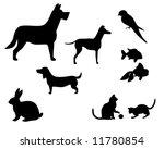 vector illustration of various...   Shutterstock .eps vector #11780854