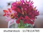 beautiful fresh flowers  bright ...   Shutterstock . vector #1178114785
