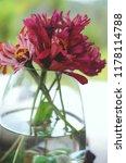 beautiful fresh flowers  bright ...   Shutterstock . vector #1178114788