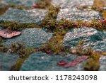 Autumn Stone Paving Stones With ...