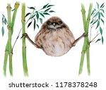 a watercolor illustration... | Shutterstock . vector #1178378248