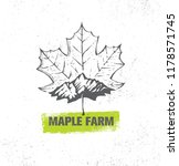 organic maple syrup producer... | Shutterstock .eps vector #1178571745