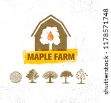 organic maple syrup producer... | Shutterstock .eps vector #1178571748