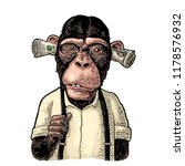 monkeys with money on ears.... | Shutterstock .eps vector #1178576932
