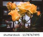 nostalgia rose vintage   Shutterstock . vector #1178767495