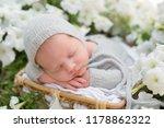newborn baby. newborn photo... | Shutterstock . vector #1178862322